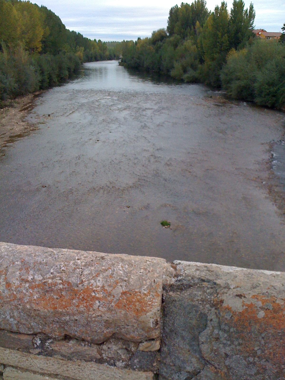 Rio Obrigo