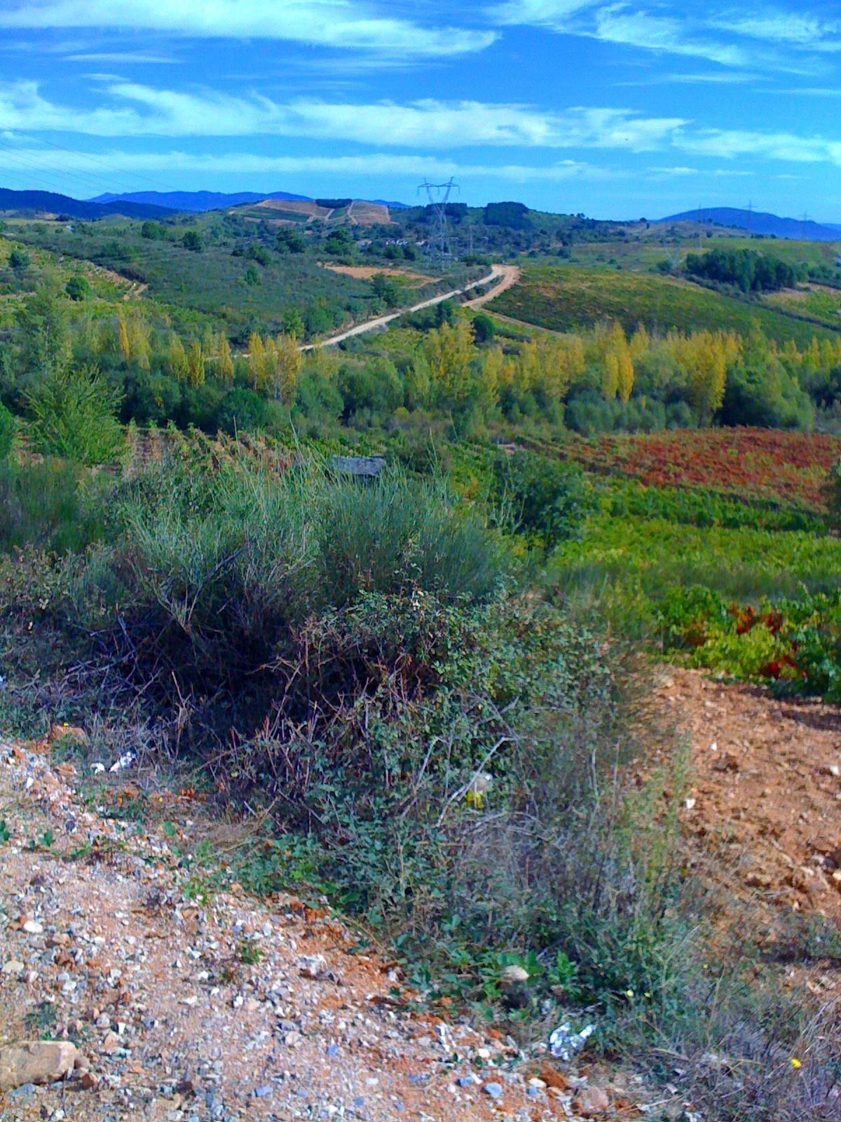 auf dem Weg nach Villa Franca del Bierzo