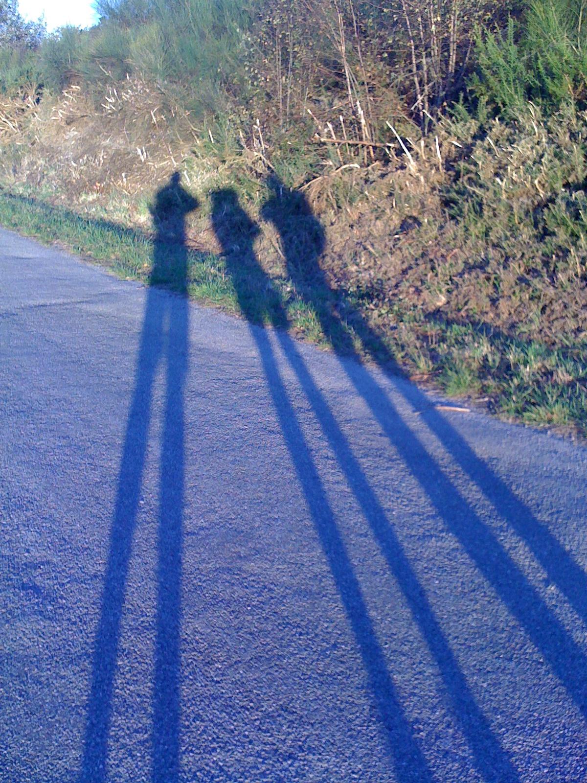lange, lange Schatten