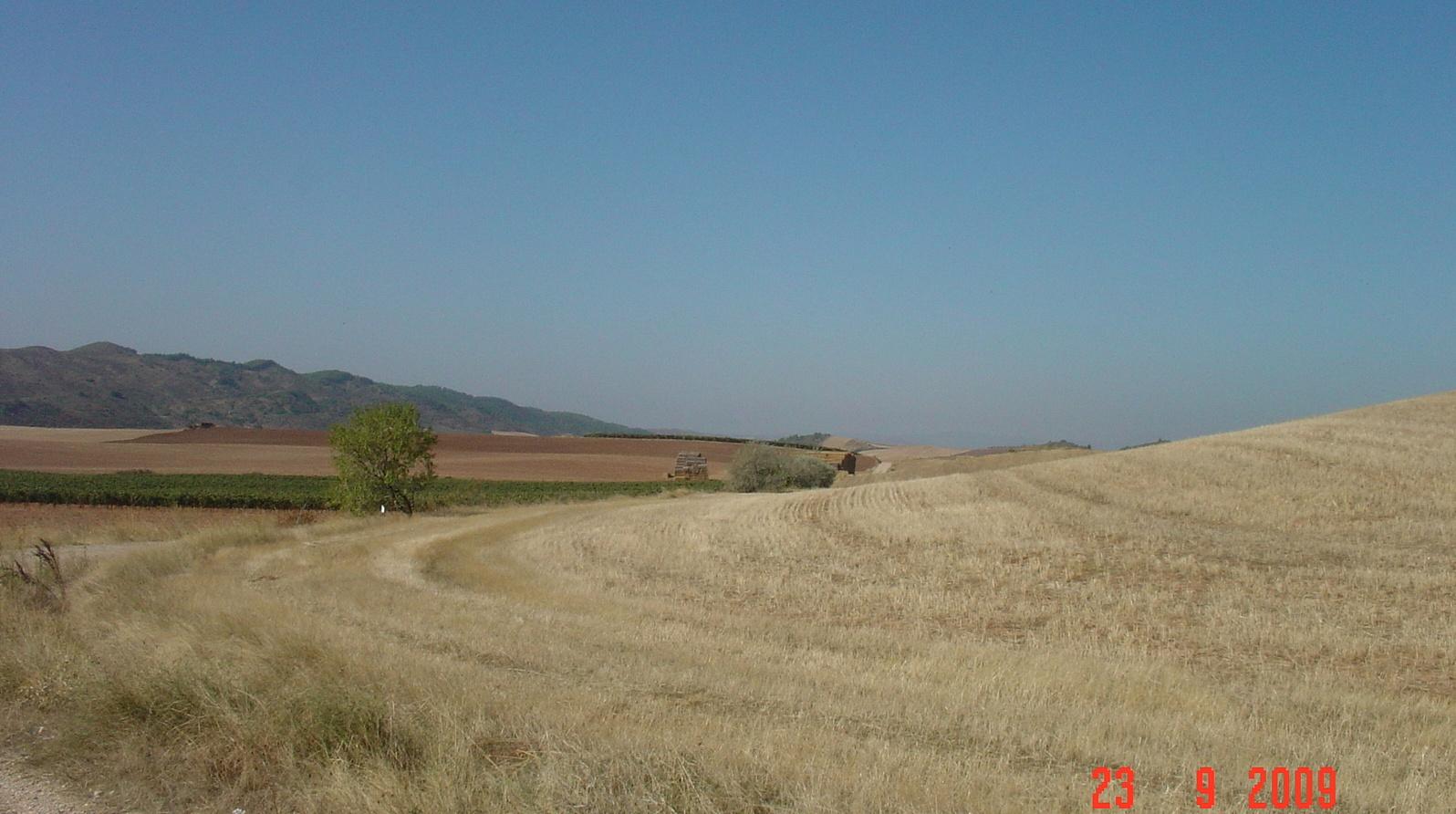 unendliche Weite, abgeernte Felder